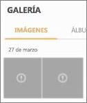 Un archivo de imagen cifrado en la aplicación Galería.