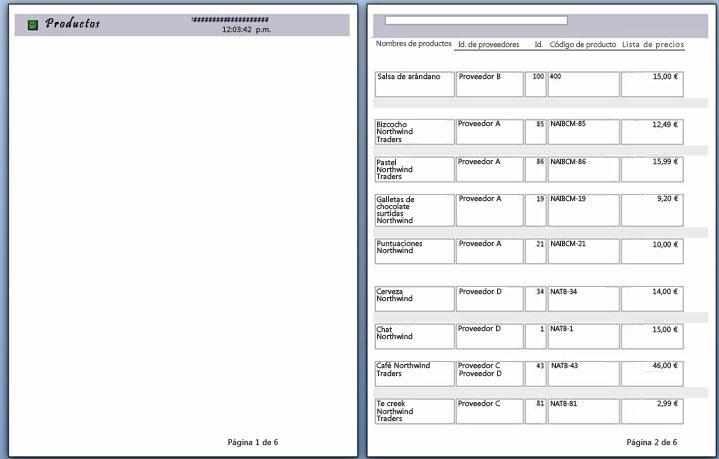vista previa de las páginas del informe con salto de página aplicado