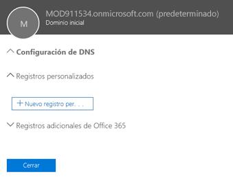 Seleccionar configuración de DNS