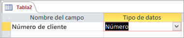 Primer nombre de campo y tipo de datos de una nueva tabla de Access