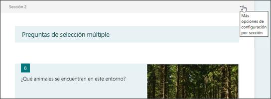 Más opciones de configuración para una sección