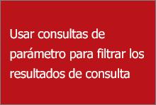 Usar las consultas de parámetros para filtrar los resultados de la consulta