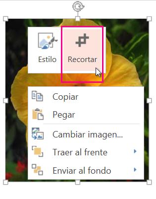 Hacer clic con el botón derecho en la imagen y luego hacer clic en Recortar