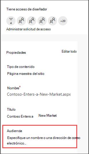 Panel de detalles páginas con opción para escribir una audiencia