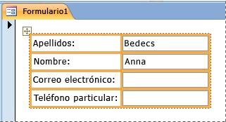 Campos contenidos en un diseño apilado en un formulario