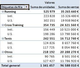 Datos resumidos y sumados en un informe de tabla dinámica