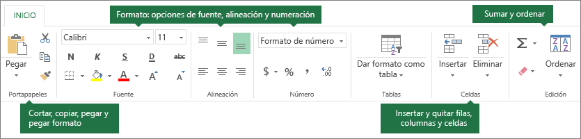 Pestaña Inicio con los botones Cortar, Copiar, Pegar y Pegar con formato; opciones de formato, como Fuente, Alineación y Formatos de número; insertar filas o columnas; sumar y ordenar