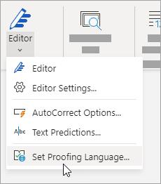 En la pestaña Revisar, haga clic en Ortografía > Establecer idioma de corrección.
