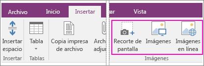Captura de pantalla de las opciones de Insertar imágenes en OneNote 2016.