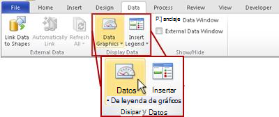 El grupo Mostrar datos en la ficha Datos en la Cinta de Visio2010.