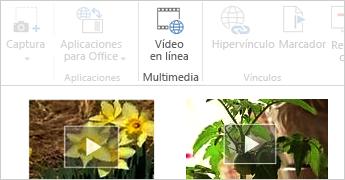 Vídeo en línea en un documento de Word