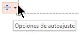 La herramienta de opciones de autoajuste aparece cuando un marcador de posición se rellena con texto