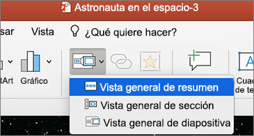 Lista desplegable de Vista general con la opción Vista general de resumen seleccionada