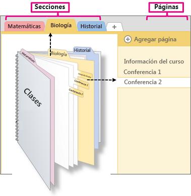 Información general sobre secciones y páginas