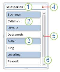 Elementos de segmentación de datos de tablas dinámicas