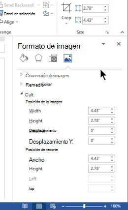 El panel formato de imagen, acoplada en el lado derecho de la ventana de Word
