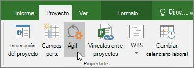 Captura de pantalla del botón de la cinta de opciones de proyecto, pestaña proyecto, sección Propiedades ágil