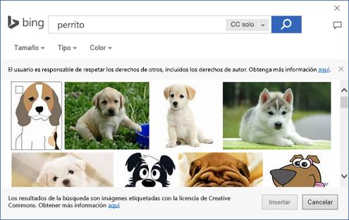 Captura de pantalla del cuadro de diálogo donde puede agregar imágenes prediseñadas en las aplicaciones de Office.
