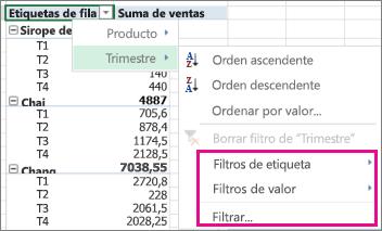 Opciones de filtrado de datos de tabla dinámica