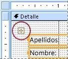 Selector de diseño en un formulario en la vista Diseño