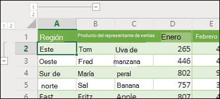 Aplicar niveles de esquema de fila y columna en Excel para la web desde grupo de datos/Desagrupar.