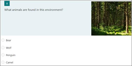 Ejemplo de una pregunta con una imagen