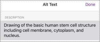 Cuadro de diálogo texto alternativo para imágenes en OneNote para iOS.