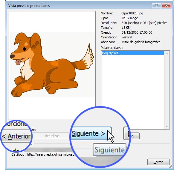 Examine las imágenes haciendo clic en los botones Anterior y Siguiente en el cuadro de diálogo Vista previa o propiedades.