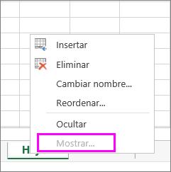 La opción Mostrar está en gris, lo que indica que no hay hojas de cálculo ocultas