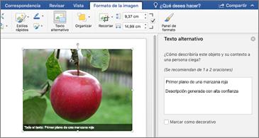 Documento de Word con una imagen y el panel Texto alternativo a la derecha
