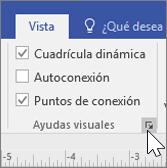 Captura de pantalla de las opciones de la pestaña Vista con Cuadrícula dinámica y Puntos de conexión seleccionadas