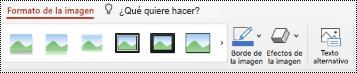 Botón texto alternativo en la cinta de opciones de una imagen en PowerPoint para Mac.