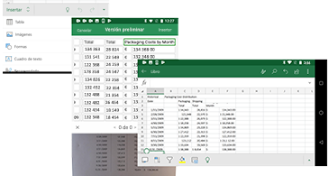 Menú, pantalla de vista previa y hoja de cálculo con la información que aparece en la imagen
