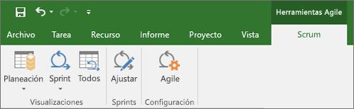 Captura de pantalla de la cinta de Project en la que se muestra la pestaña Herramientas de Agile