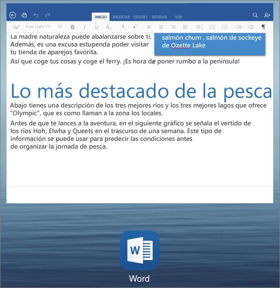 Selección de aplicaciones en el iPad