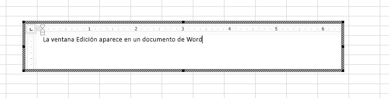 Puede editar el documento de Word incrustado directamente en Excel.