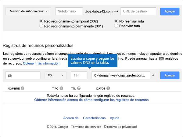 Escriba o pegue valores en la sección Registros de recursos personalizados