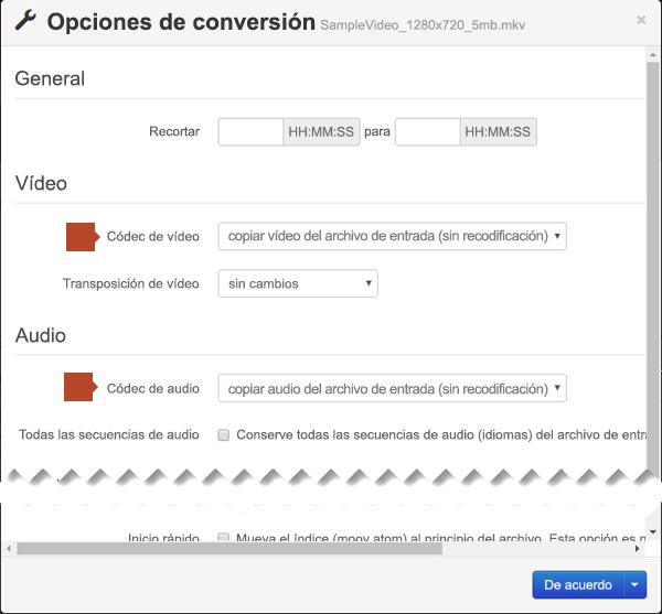 En el cuadro de diálogo Opciones de conversión hay opciones para el Códec de vídeo y el Códec de audio