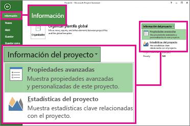 Menú Información del proyecto con la opción Propiedades avanzadas resaltada
