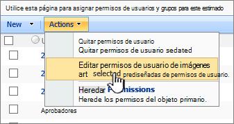 Editar permissioins de usuario en el menú Acción