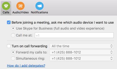 Vínculo de ayuda '¿Cómo puedo agregar delegados?' en la página de llamadas del cuadro de diálogo Preferencias