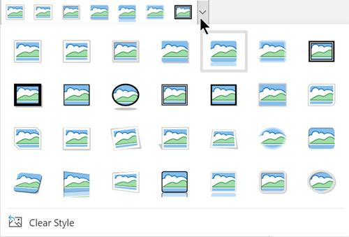 La galería de opciones Estilos de imagen incluye tres formas ovaladas y muchos rectángulos.