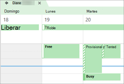 El aspecto de su calendario para la persona con la que lo ha compartido.