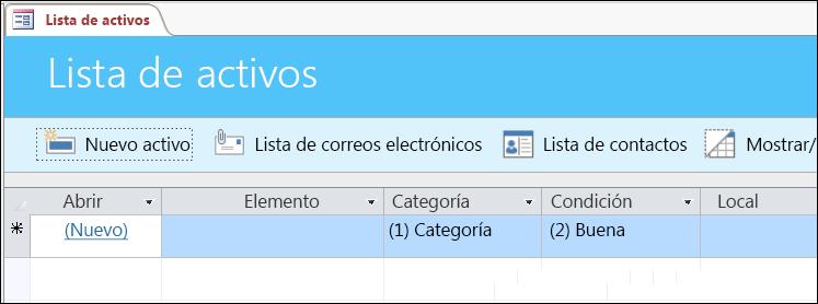 Formulario de la lista de activos en la plantilla de la base de datos de activos de Access