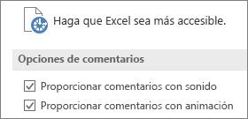 Vista parcial de configuración de accesibilidad de Excel