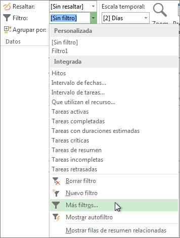 La cinta de Project, que muestra cómo crear un filtro personalizado.