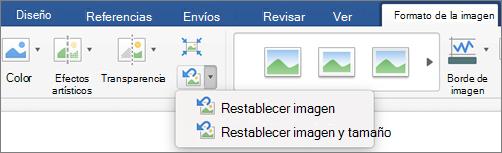Haga clic en Restablecer fondo en la ficha Formato de imagen