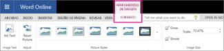 En la pestaña Formato de herramientas de imagen