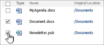 Cuadro de diálogo de reciclaje de SharePoint 2007 con elementos seleccionados
