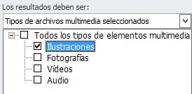 En el cuadro Resultados posibles, seleccione los tipos de elementos multimedia que quiere incluir en los resultados de la búsqueda